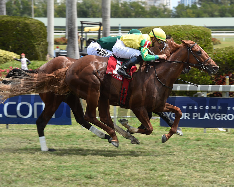 Therapist wins the 2018 Cutler Bay<br /> Coglianese Photos/Leslie Martin