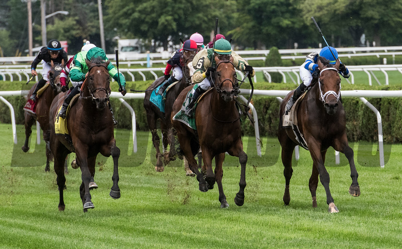 Raging Bull with jockey Joel Rosario, left goes to the outside of the field to win the 34th running of The National Museum of Racing and Hall of Fame stake at the Saratoga Race Course Friday Aug. 3, 2018 in Saratoga Springs, N.Y.  Photo by Skip Dickstein