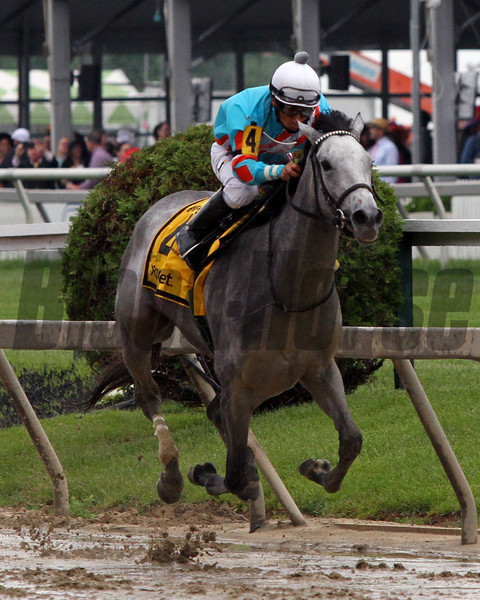Red Ruby Paco Lopez Black-Eyed Susan Stakes Chad B. Harmon