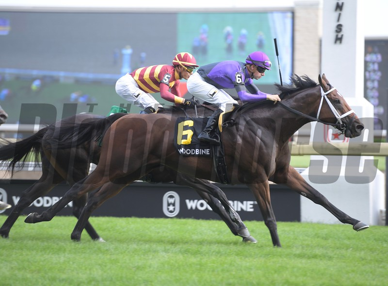 Long On Value wins the Highlander Stakes at Woodbine Saturday, June 30, 2018. Photo: Anne M. Eberhardt