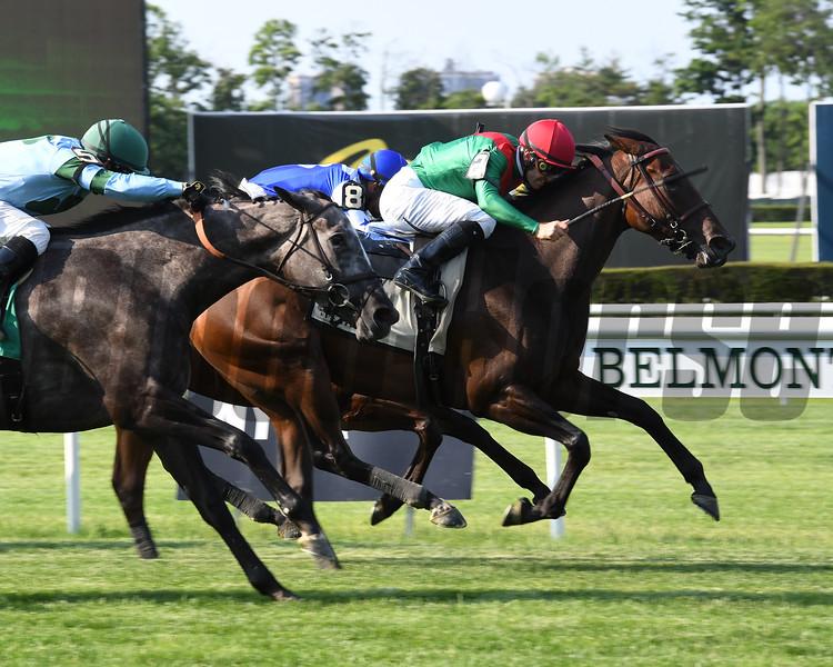 La Sardane wins the 2018 Intercontinental Stakes<br /> Coglianese Photos