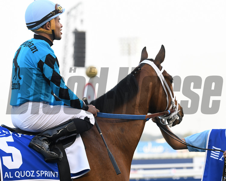 Stormy Liberal, Joel Rosario, Al Quoz Sprint; G1; Meydan Race Course; Dubai; March 31 2018, 2nd place