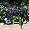 Royal Ascot,, Ascot Race Course, Ascot, UK, 6-21-18, Photo by Mathea Kelley