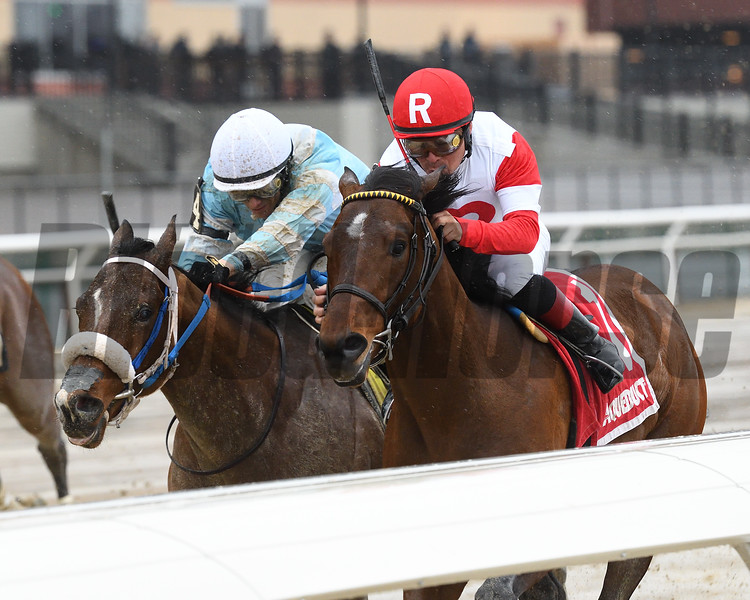 Battle Station wins the 2018 Rego Park Stakes