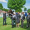 Study Of Man wins the Prix du Jockey Club (G1) at Chantilly Racecourse.
