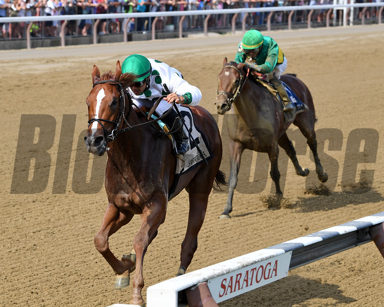 Promises Fulfilled wins the 2018 Amsterdam<br /> Coglianese Photos/Chelsea Durand