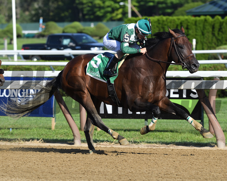 Always Sunshine wins the 2018 Tale of the Cat<br /> Coglianese Photos