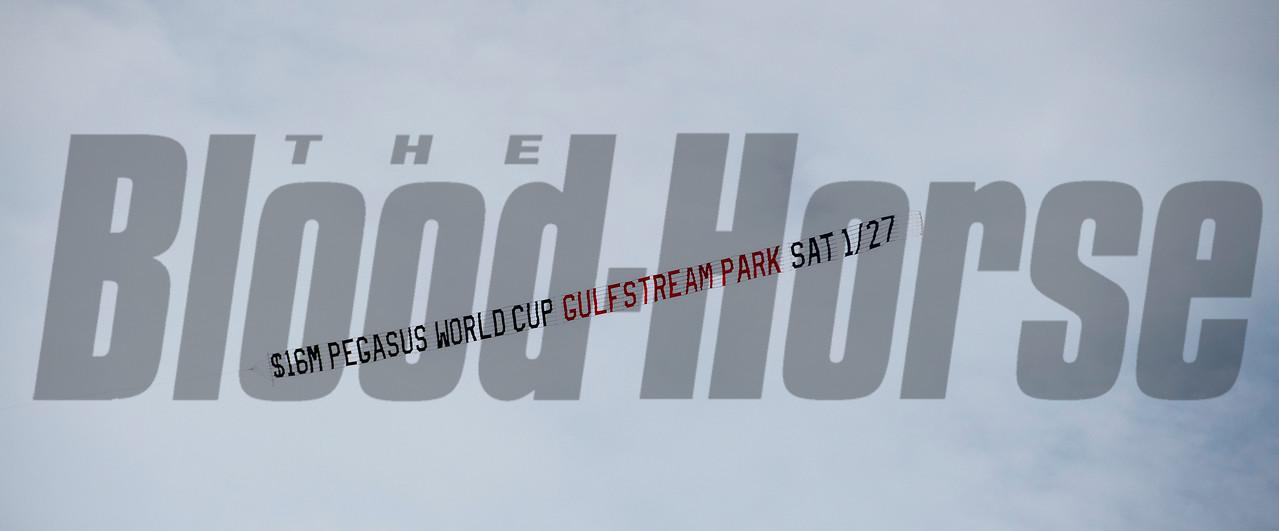 banner, scene, Gulfstream Park, January 19 2018