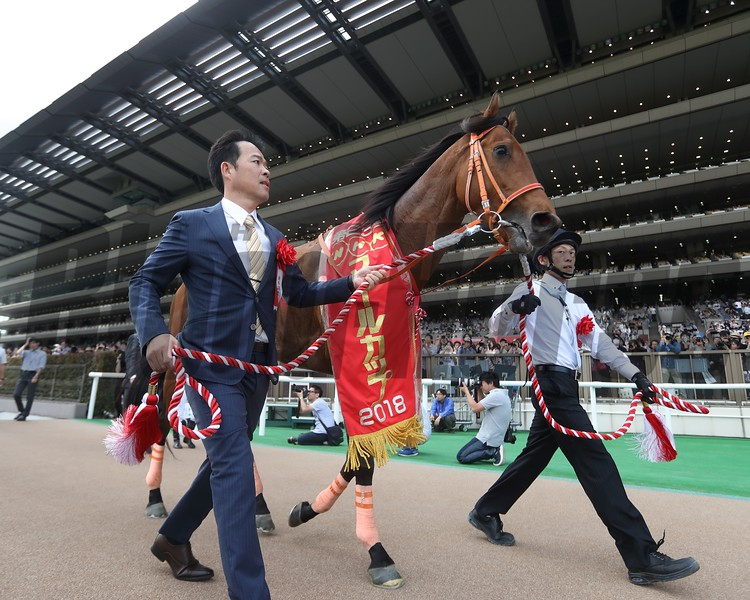 Keiai Nautique, Yusuke Fujioka, NHK Mile Cup, G1, Tokyo Racecourse, May 6, 2018