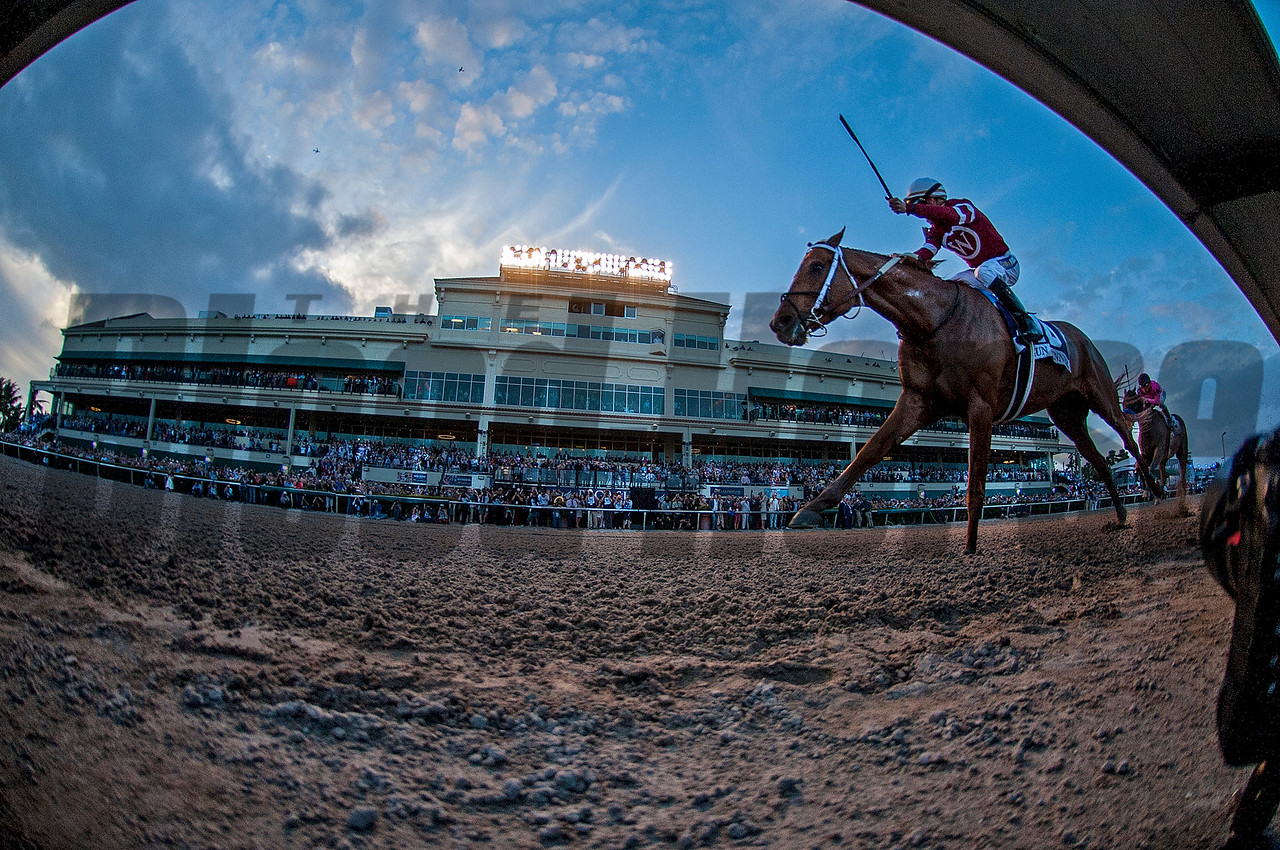 Gun Runner; Florent Geroux; Pegasus World Cup Invitational Stakes; G1; January 27 2018; Gulfstream Park; Steve Asmussen