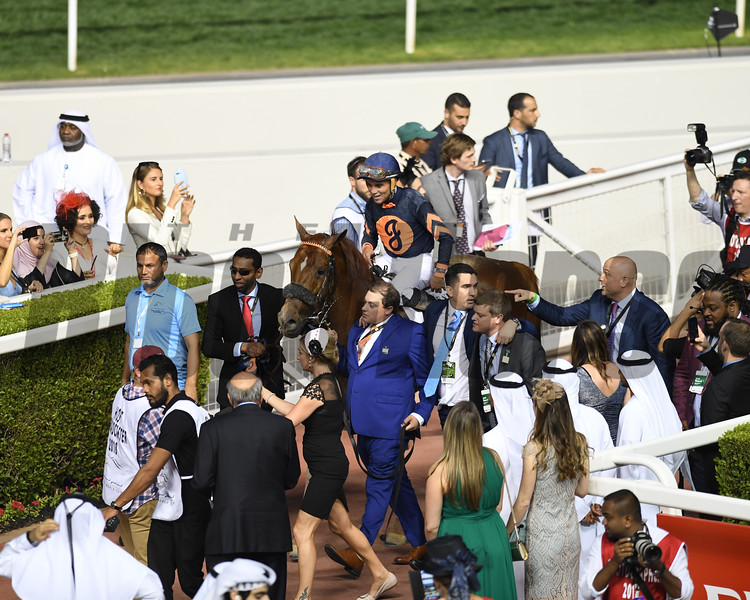 Mind Your Biscuits, Joel Rosario, win the Dubai Golden Shaheen, DWC 2018, Meydan Race Course, Dubai, UAE, 3-31-18, photo by Christopher Rahayel /Dubai Racing Club