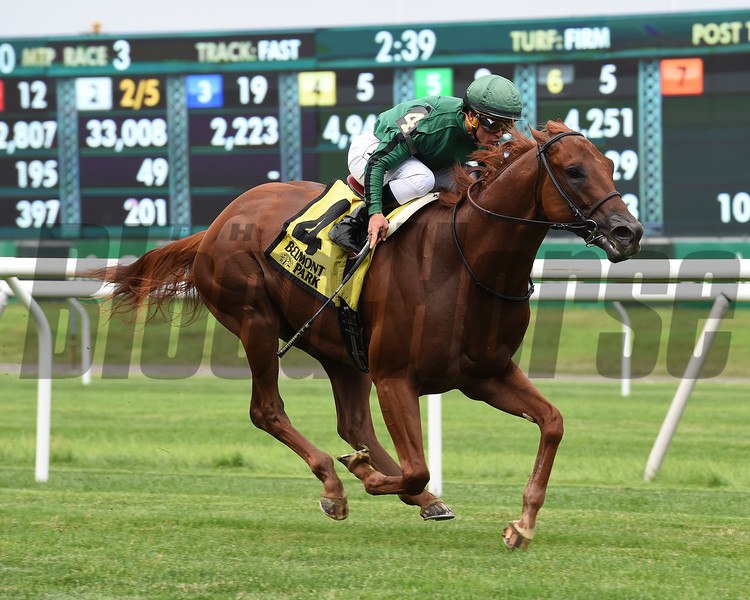 Up the Ante wins the Manila Stakes at Belmont Park, July 4, 2018. Photo: Coglianese Photos/Chelsea Durand