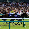 Mikki Rocket wins the Takarazuka Kinen at Hanshin Racecourse Sunday, June 24, 2018. Photo: Naoji Inada