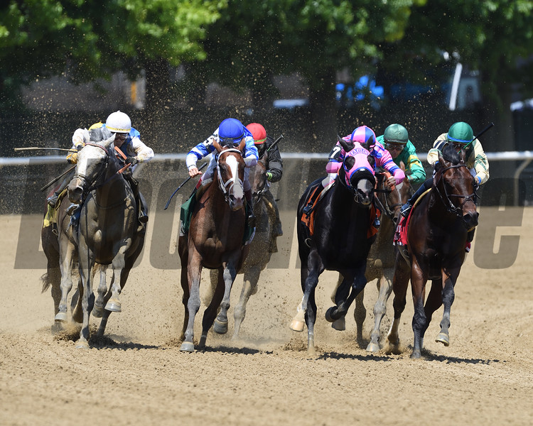 Prince Lucky wins 2018 Easy Goer Stakes at Belmont Park June 9, 2018. Photo: Coglianese Photos/Rob Mauhar