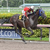 Millionaire Runner wins the 2018 Home of the Brave Handicap	<br /> Photo: Coglianese Photos/Lauren King