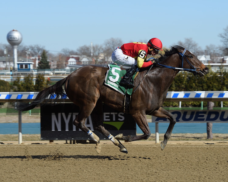 Morning Buzz wins the 2018 Peeping Tom Stakes<br /> Coglianese Photos/Chelsea Durand