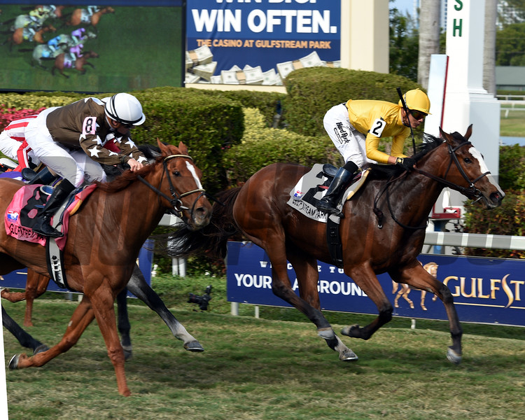 Lull; Jose Ortiz; Honey Fox Stakes; G3T; Gulfstream Park; March 31 2018