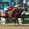 Bee Jersey wins 2018 Metropolitan Handicap at Belmont Park June 9, 2018. Photo: Coglianese Photos