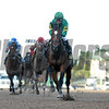Mask wins the 2018 Mucho Macho Man Stakes<br /> Coglianese Photos/Leslie Martin