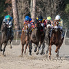 Flameaway with Jose Lezcano up wins Sam F Davis @ Tampa Bay Downs. <br /> © Joe DiOrio/Winningimages.biz