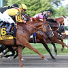 Good Magic Jose Ortiz Haskell Invitational Chad B. Harmon