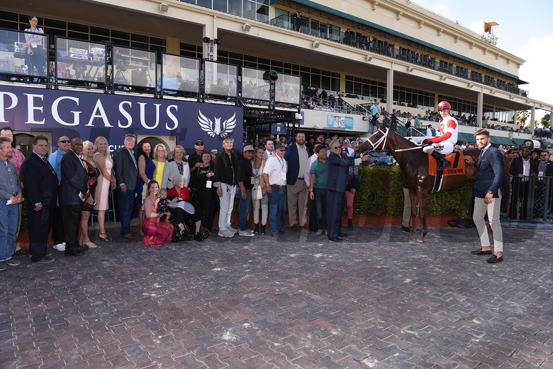 Oscar Nominated; Jose Ortiz; W. L. McKnight Handicap; G3T; Gulfstream Park; January 27 2018