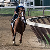 Good Magic with exercise rider Walter Malasquez makes his final preparatory breeze on the main track Friday Aug. 17 at the Saratoga Race Course in Saratoga Springs, N.Y. for next Saturday's Travers Stakes.  Photo by Skip Dickstein