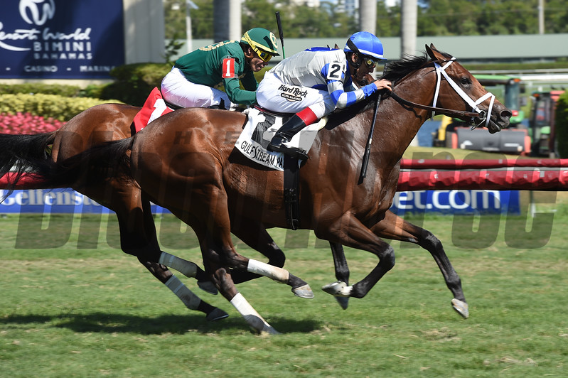 Maraud wins the 2018 Palm Beach<br /> Coglianese Photos/Leslie Martin