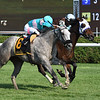 Goodbye Brockley wins the 2018 New York Stallion Series Stakes - Statue of Liberty Division<br /> Coglianese Photos/Elsa Lorieul