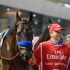 Mubtaahij (IRE); Dubai World Cup; G1; Meydan Race Course; Dubai; March 31 2018, 3rd place