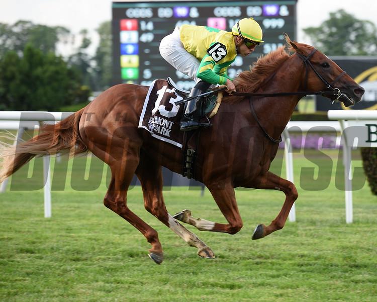 Therapist wins 2018 New York Stallion Stakes at Belmont Park. Photos: Coglianese Photos
