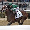 Army Mule wins the 2018 Carter<br /> Coglianese Photos/Joe Labozzetta