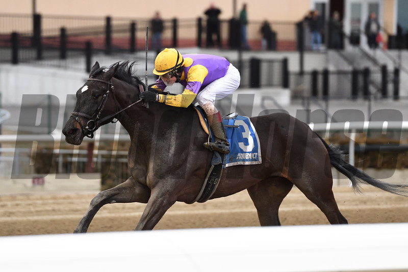 Midnight Disguise wins the 2018 Busher Stakes<br /> Coglianese Photos/Joe Labozzetta