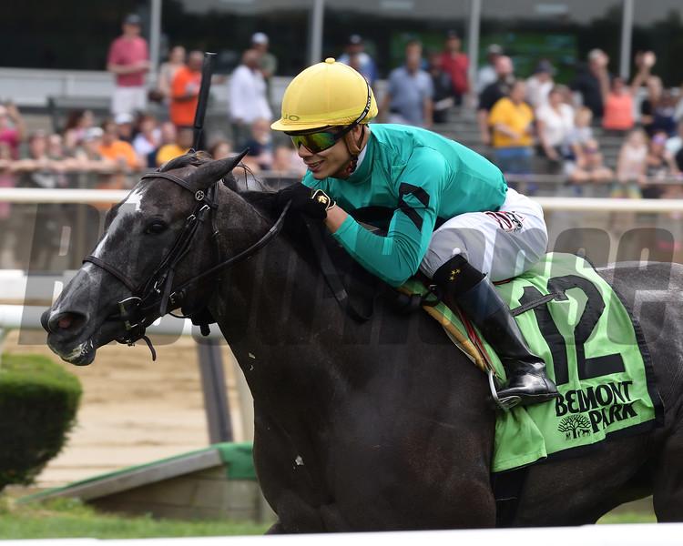 Kreesie wins 2018 New York Stallion Stakes at Belmont Park. Photo: Coglianese Photos/Joe Labozzetta