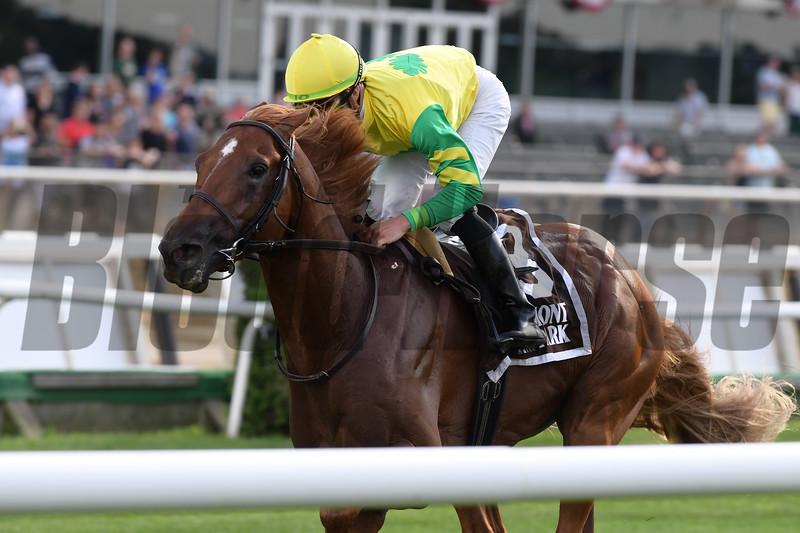 Therapist wins 2018 New York Stallion Stakes at Belmont Park. Photos: Coglianese Photos/Joe Labozzetta