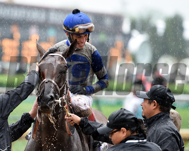 Maraud wins the 2018 American Turf Stakes<br /> Dave Harmon Photo