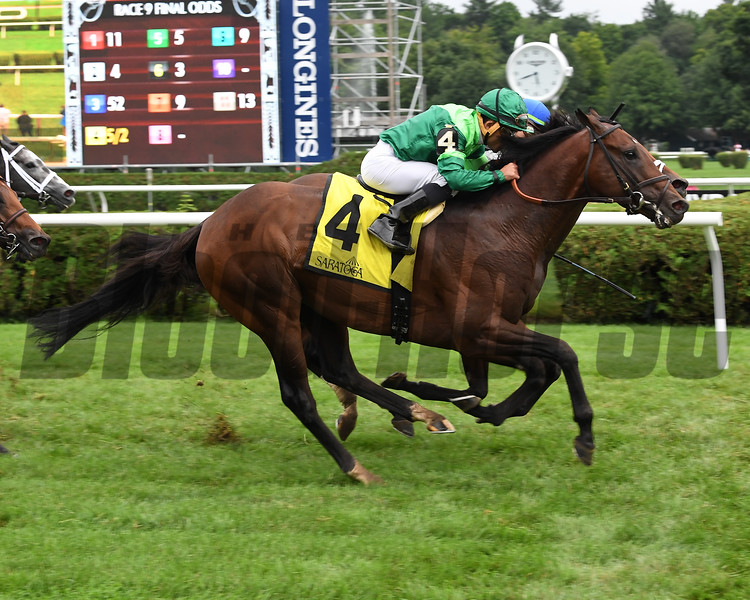 Raging Bull wins the 2018 National Museum of Racing Hall of Fame Stakes<br /> Coglianese Photos