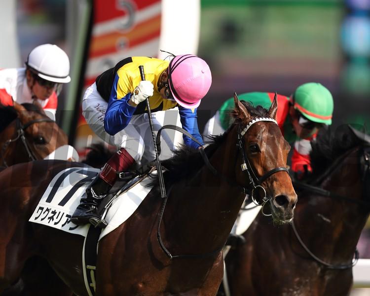 Wagnerian (JPN), Tokyo Yushun, Japanese Derby, G1, Tokyo Racecourse, May 27, 2018