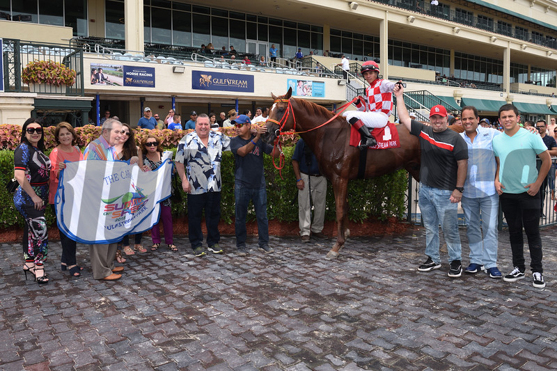War Giant wins Carry Back Stakes at Gulfstream Park Saturday, June 30, 2018. Photos: Coglianese Photos