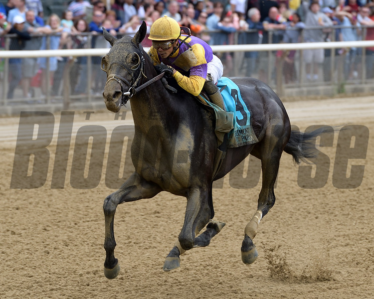 Midnight Disguise, Jose Ortiz, Bouwerie Stakes, $125,000, Belmont ark, May 28, 2018