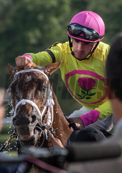 Jockey Forent Geroux gives #4 Monomoy Girl a cooling sponge of water after winning the 102nd running of the Coaching Club American Oaks at the Saratoga Race Course Sunday July 22, 2018 in Saratoga Springs, N.Y.  Photo by Skip Dickstein