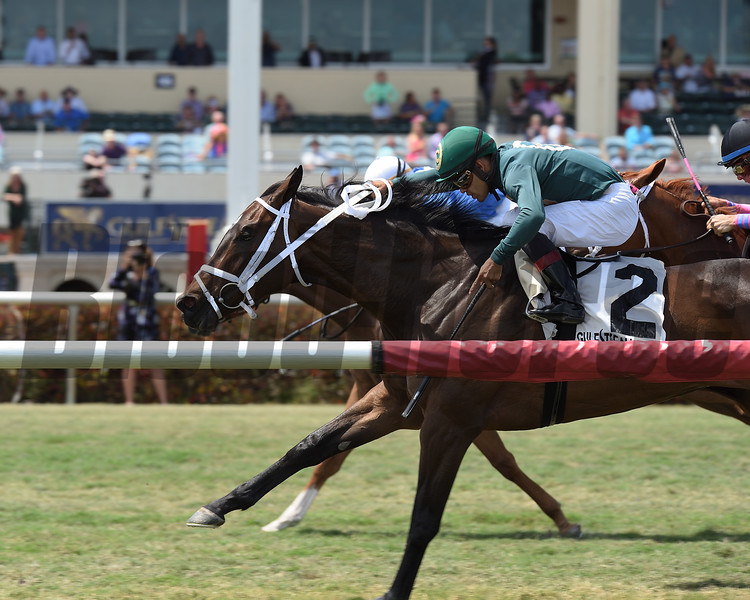 Figarella's Queen wins the 2018 Sanibel Island<br /> Coglianese Photos/Lauren King