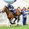 Hunting Horn, Ryan Moore, win the G3 Hampton Court Stakes, Royal Ascot,, Ascot Race Course, Ascot, UK, 6-21-18, Photo by Mathea Kelley