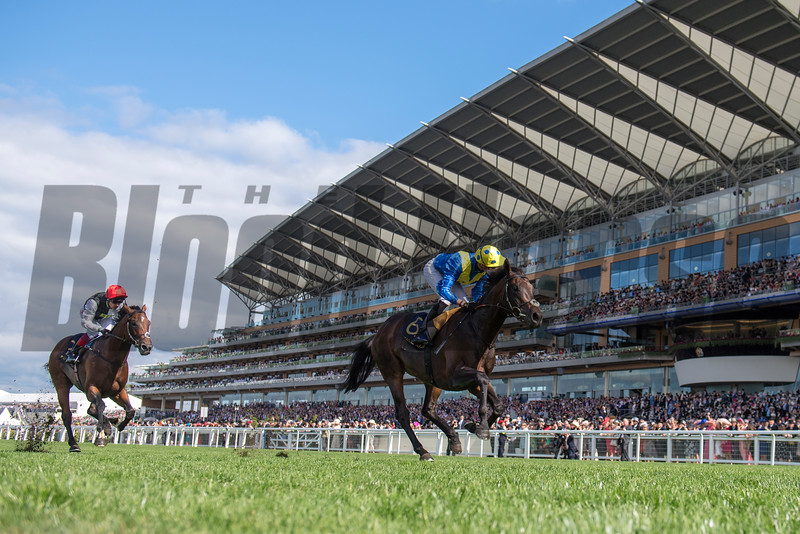 Poet's Word, James Doyle, win the G1 Prince of Wales Stakes, Royal Ascot, Ascot Race Course, Ascot, UK, 6-20-18, Photo by Mathea Kelley
