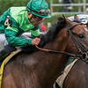 Jockey Jose Ortiz looks over from Ride A Comet to find Raging Bull with jockey Joel Rosario looming up on the outside to win the 34th running of The National Museum of Racing and Hall of Fame stake at the Saratoga Race Course Friday Aug. 3, 2018 in Saratoga Springs, N.Y.  Photo by Skip Dickstein