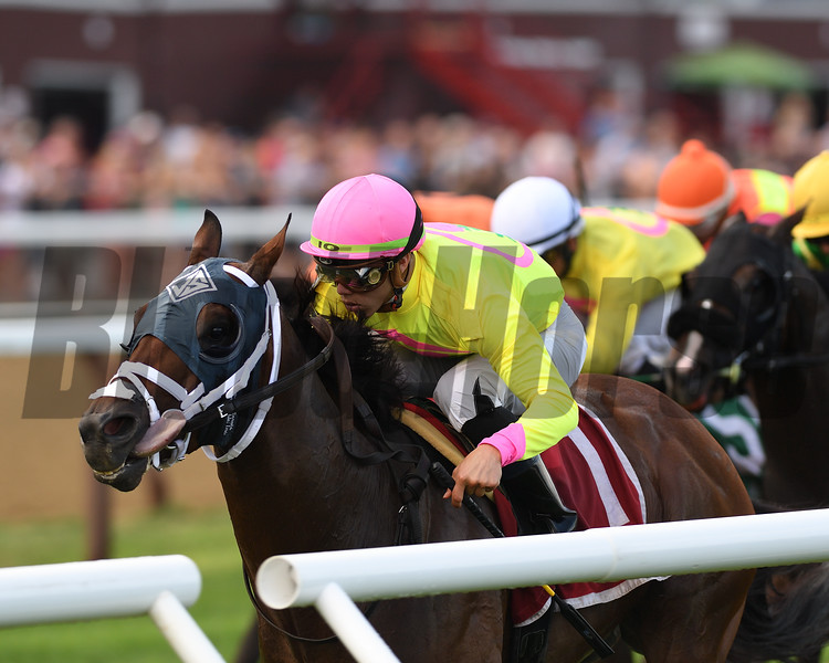 World of Troublewins the 2018 Quick Call Stakes<br /> Coglianese Photos/Chelsea Durand