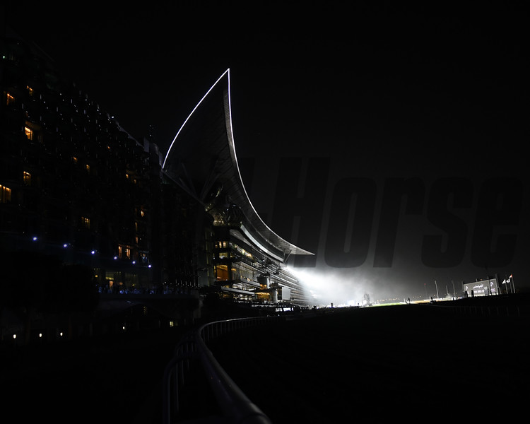 scene, grandstand, Dubai World Cup; Meydan Race Course; Dubai; March 31 2018