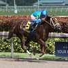 Strike Power wins the 2018 Swale Stakes<br /> Coglianese Photos