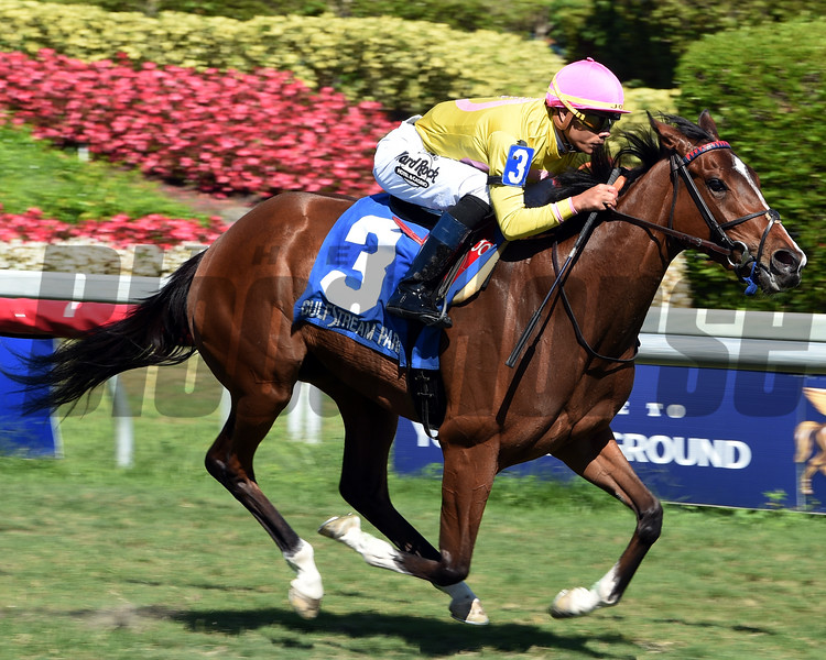 Thewayiam (FR), Jose Ortiz, Herecomesthebride Stakes, G3T, Gulfstream Park, March 3 2018<br /> Dave Harmon Photo