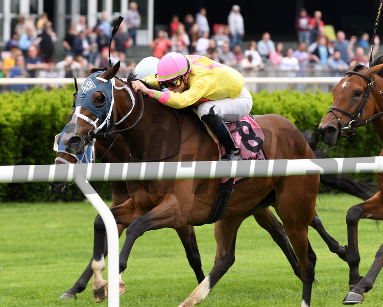 Feeling Bossy wins the 2018 Mount Vernon Stakes